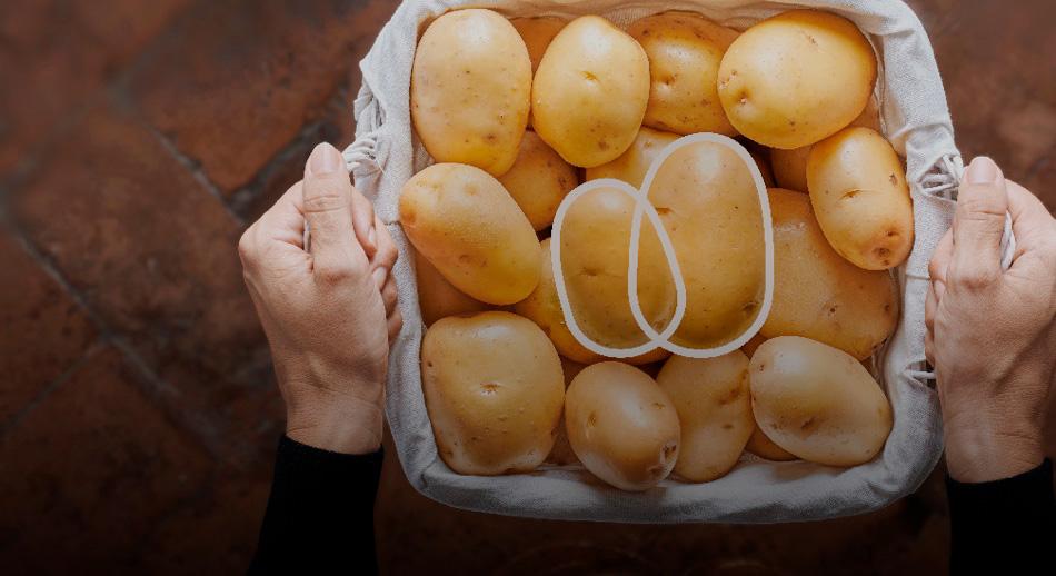 Patata di Bologna