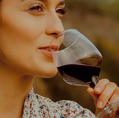 Vini di Romagna digital