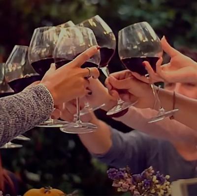 Vini di Romagna video